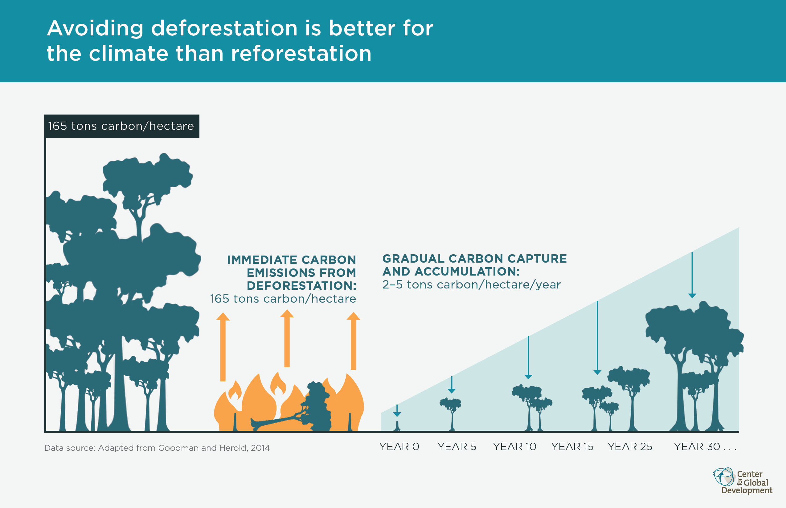 deforestation causes climate change essay The human and physical causes of climate change deforestation has a substantial effect on the the human and physical causes of climate change are.