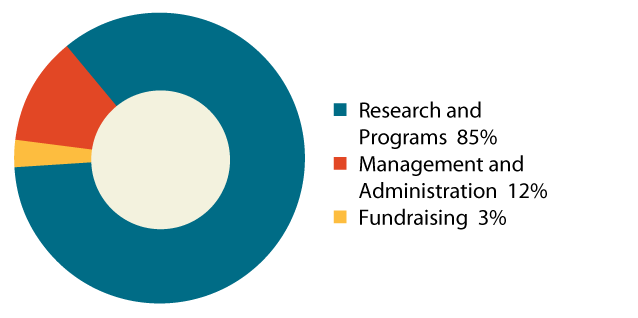 expenditure pie chart 85% research and programs 12% management and administration 3% fundraising