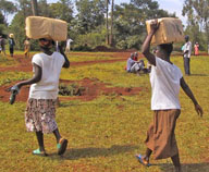 Women carrying seeds to Maridi, one of the villages within Sauri. Photo credit: Pedro Sanchez