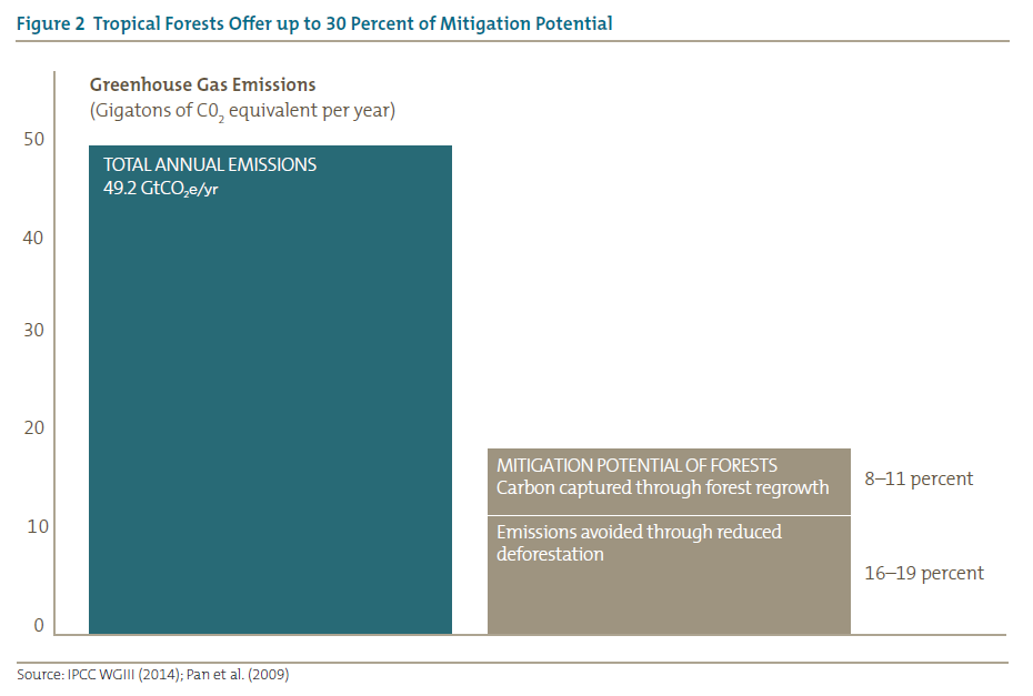 Figure 2 Tropical Forests Offer up to 30 Percent of Mitigation Potential