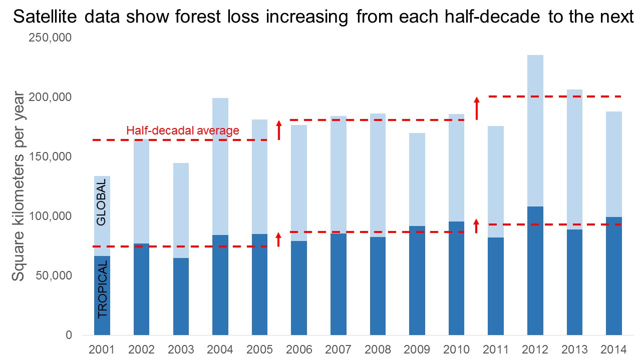 Figure 3 Sat. data show forest loss increasing each half-decade