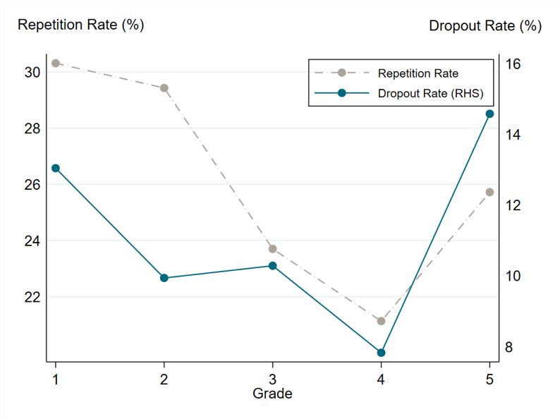 Chart showing that repetition and drop out rates vary a lot by grade