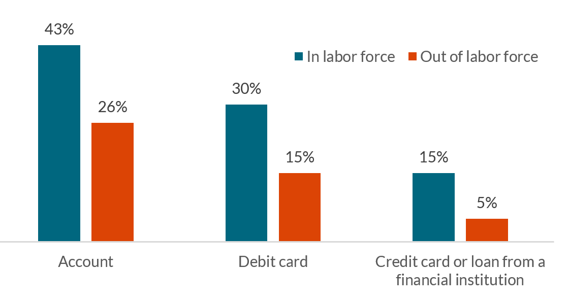 Chart showing percentage of adults with accounts, debit cards, and credit cards or loans from a financial institution.
