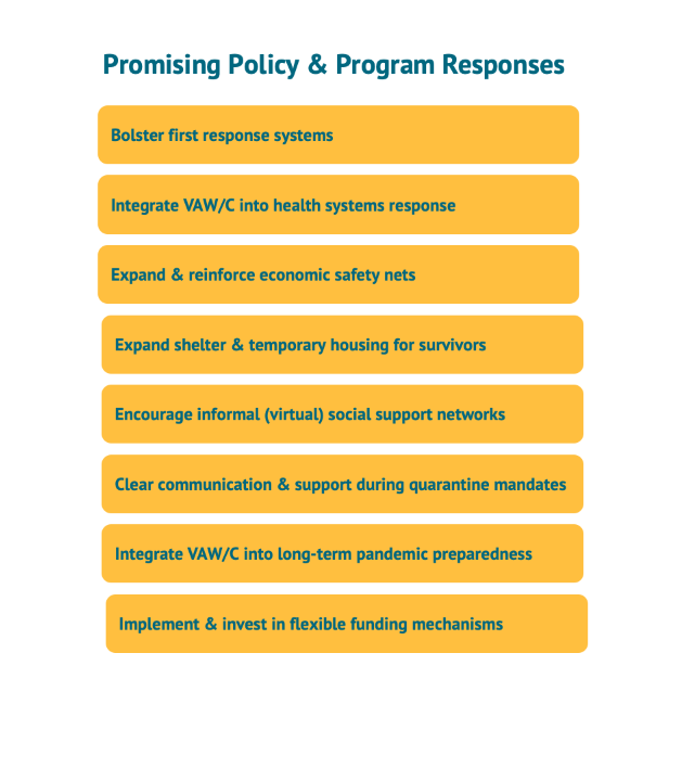 A figure showing promising policy and program responses