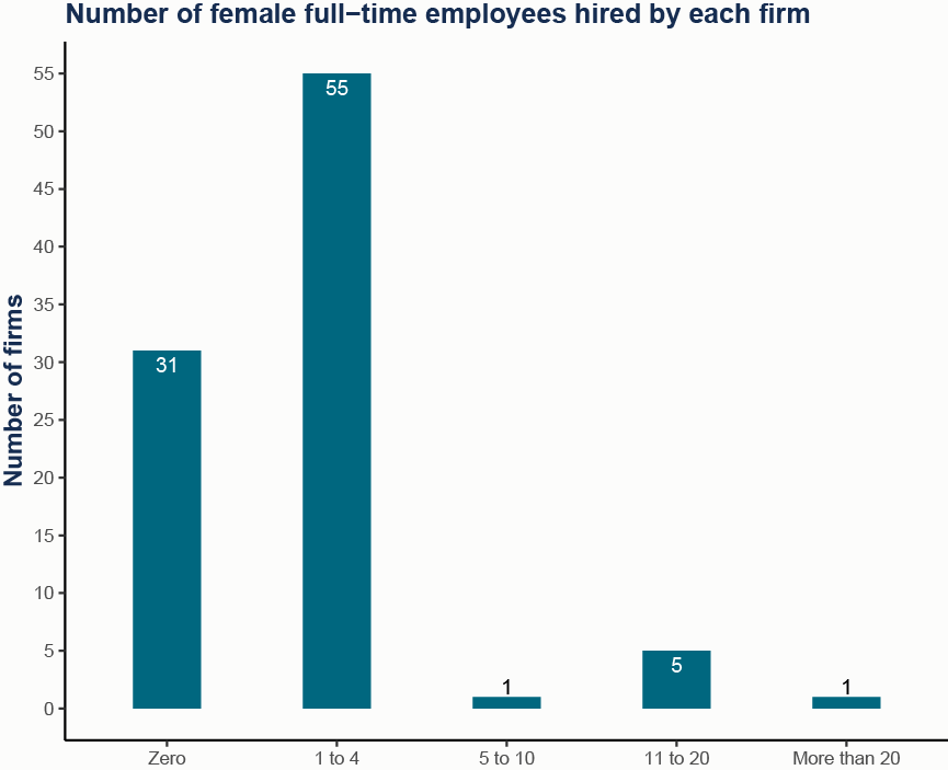Number of female employees (full time) at firms