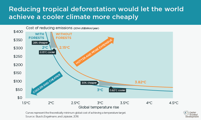 Reducing deforestation would help prevent climate change more cheaply
