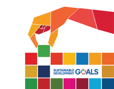 An image of the sustainable development goals