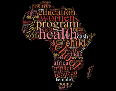 Word cloud of the most popular words from papers mentioned below