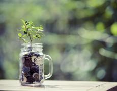 A mug with coins in it with a plant sprouting out
