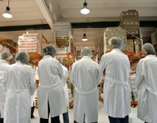 A group of people in PPE examine a factory