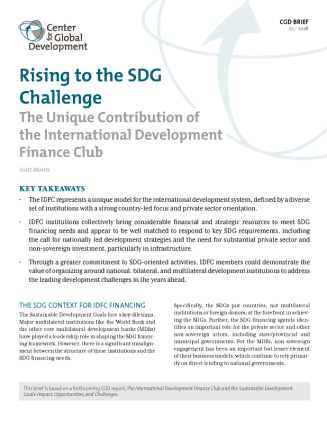 """Cover of the brief """"Rising to the SDG Challenge"""""""