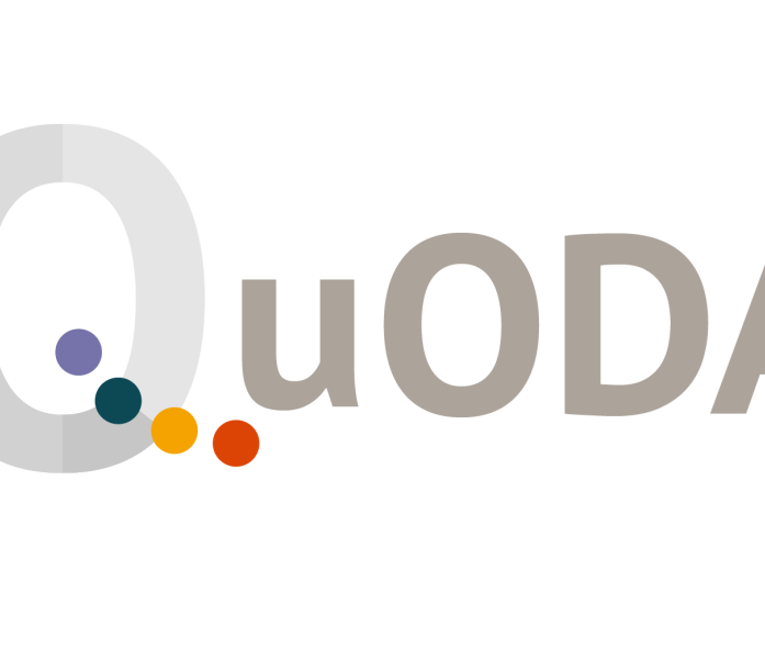 logo for CGD's Quality of Official Development Assistance tool