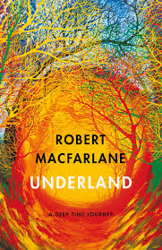Book cover of Underland: A Deep Time Journey