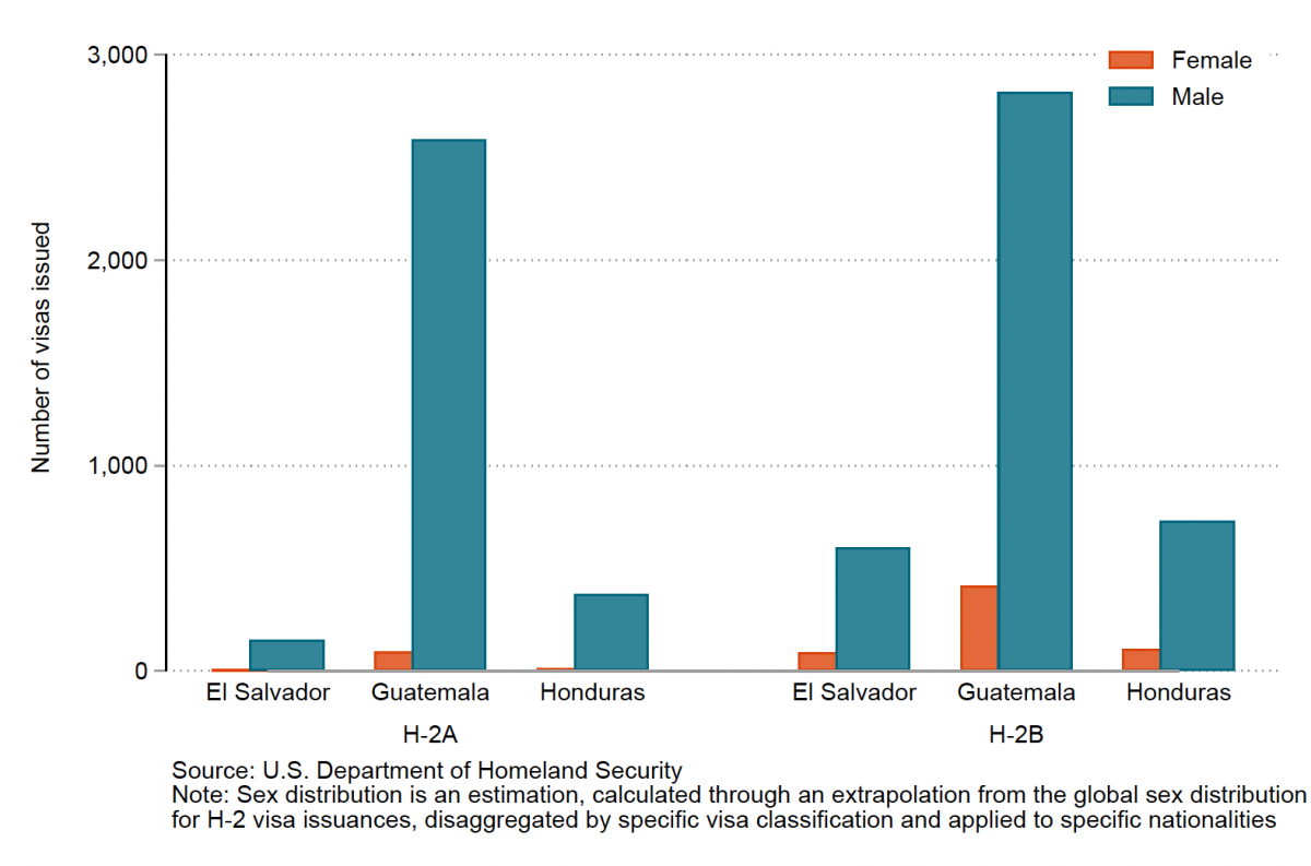 A bar chart showing that H-2 visas issued to people from the Northern Triangle primarily go to men
